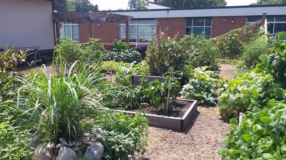 Northwoods Garden